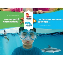 SLVie 9 - Aquarium et mini château en Touraine